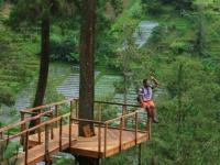 Wisata Tenggir Park1