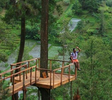 Lokasi Dan Harga Tiket Tenggir Park Ngargoyoso Karanganyar