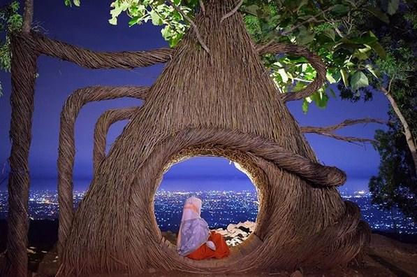 Lokasi dan Harga Tiket Hutan Pinus Pengger Jogja - Camera Wisata